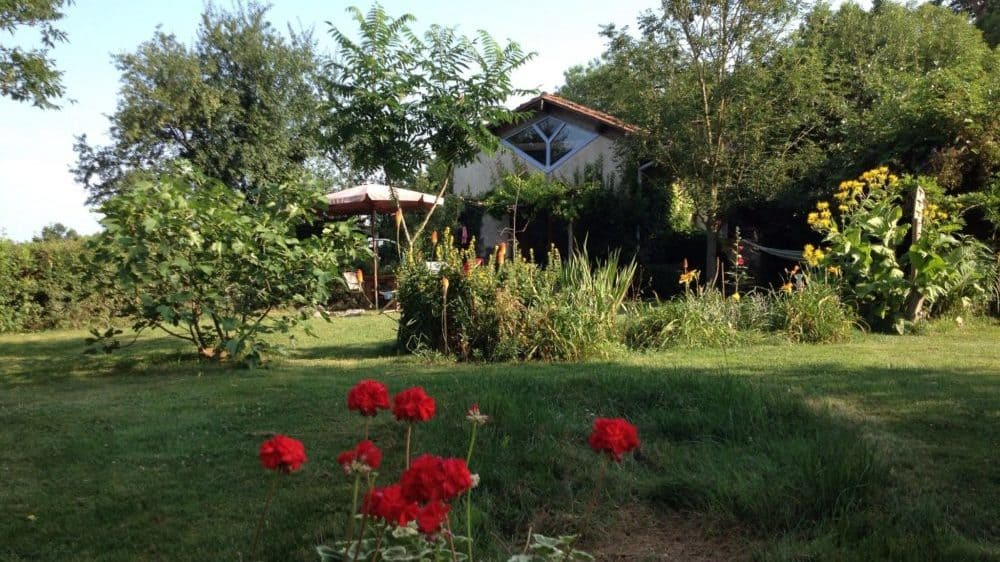 De tuin van gite Le Petit Puy met veel bloemen, een vijgenboom, een fluweelboom en vuurpijlen in de border.